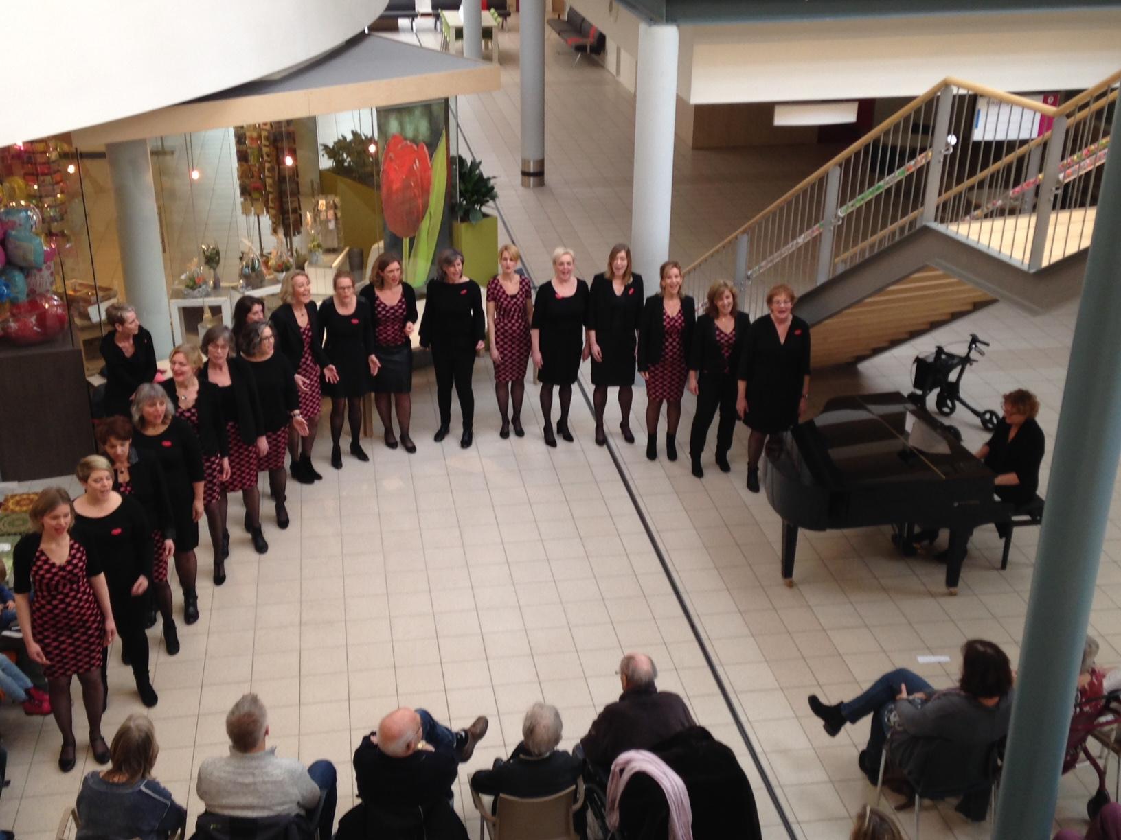 Optreden No Romeo's in het Deventer Ziekenhuis